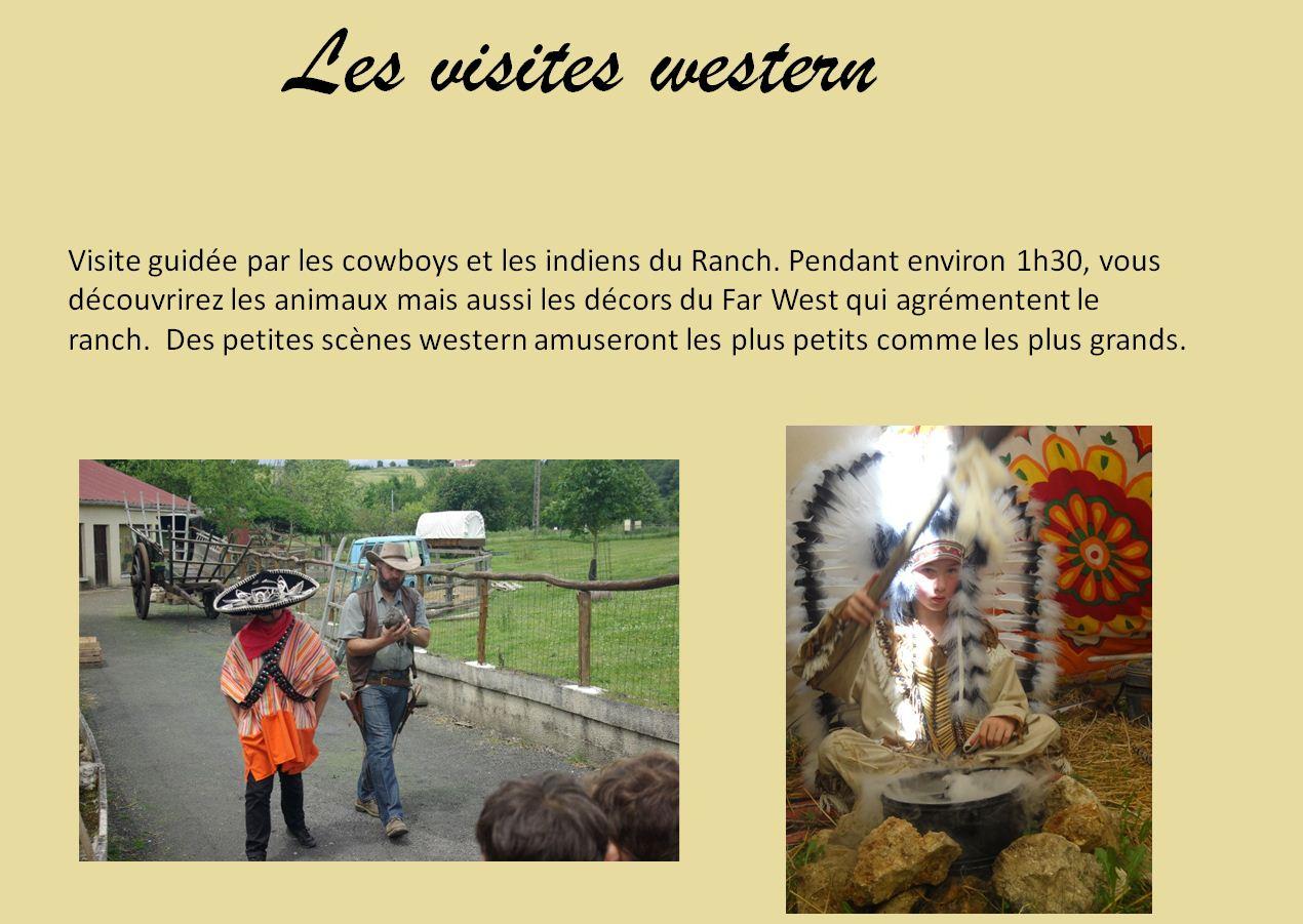 western-2.jpg